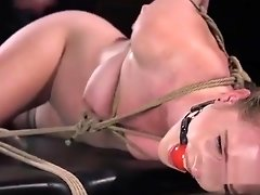 Hogtied brunette in various bondages video on WebcamWhoring.com