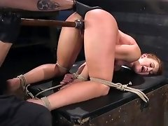 Hogtied babe pussy fucked with dildo video on WebcamWhoring.com